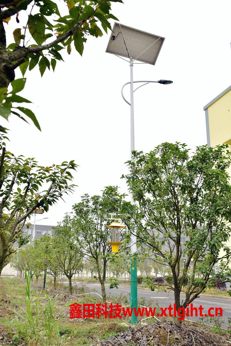 常州太阳能路灯一体式杀虫灯