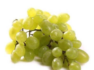 批发维多利亚葡萄
