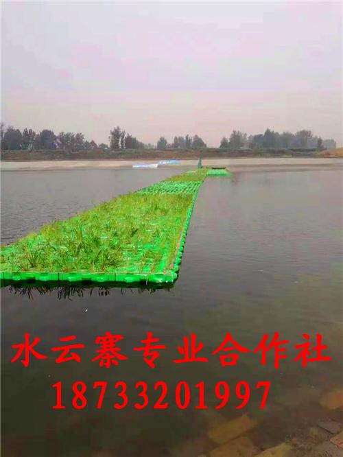 人工浮岛 生态浮岛 浮床