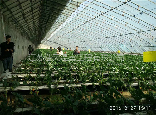 出色的保温性能的框架覆膜结构,它出现使得人们可以吃到反季节蔬菜.