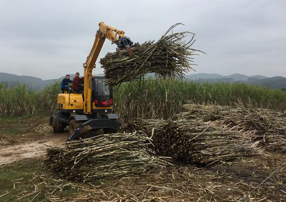 抓木机抓甘蔗图