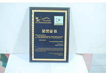上海世博会民营企业馆参展证书
