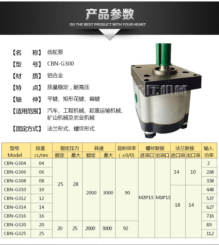电动微型齿轮泵