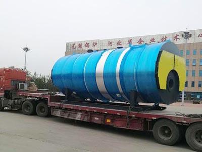 山东省生物质颗粒导热油炉