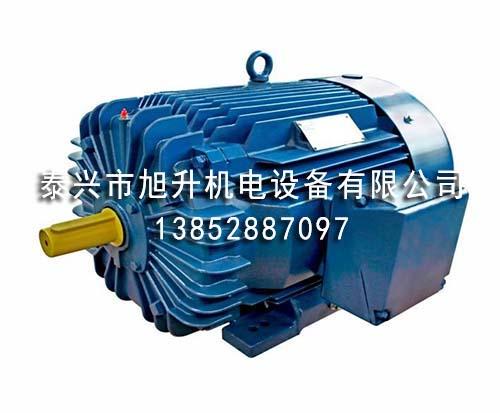 NEMA标准NEPM系列超高效率三相异步电动机