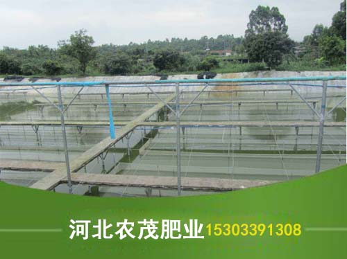 水产用有机肥直销