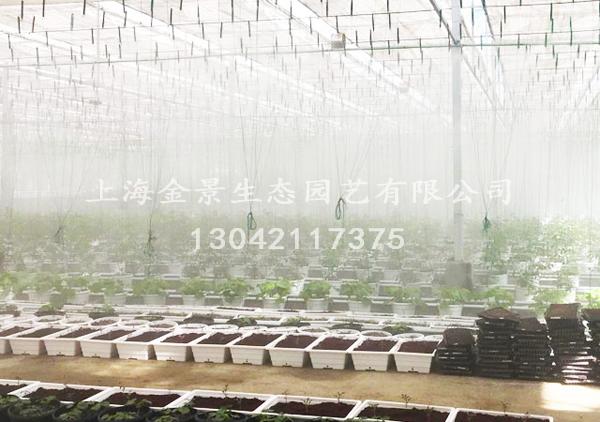 农业及景观设施竞博官网灌溉系统