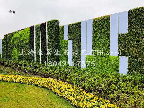 植物花卉墙