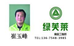 高级工程师-崔玉峰