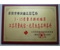 江苏质量诚信优质生态  茶场