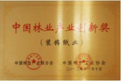 中国林产工业协会装饰纸专业金奖
