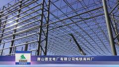 唐山德龍電廠有限公司煉鐵南料廠