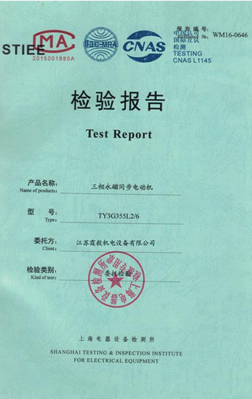 检测报告低压永磁电机