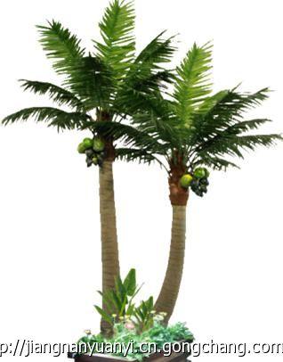 产品中心 > 仿真椰子树