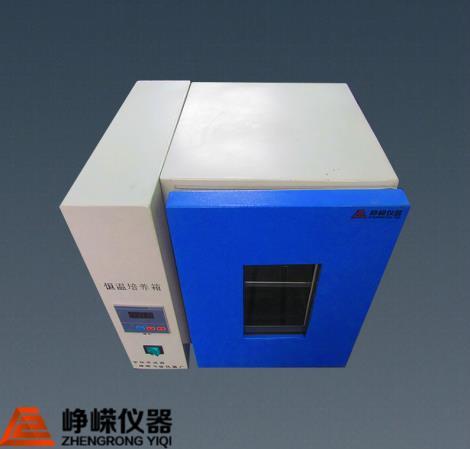 DHP-200电热恒温箱