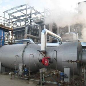 廢氣焚燒爐