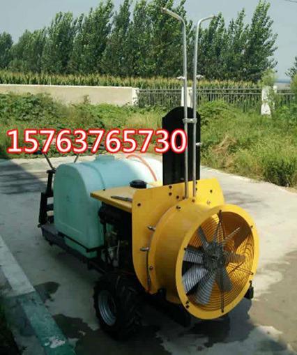 提高產量的風送式噴霧打藥機自行式噴藥器