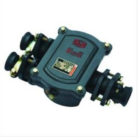 供应bhd2-100a低压电缆接线盒