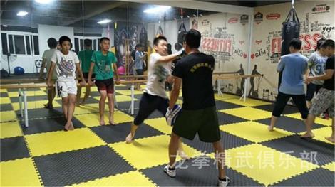 自由搏击培训