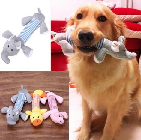 泰迪金毛狗狗玩具