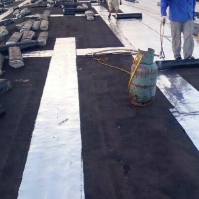 专业屋顶防水