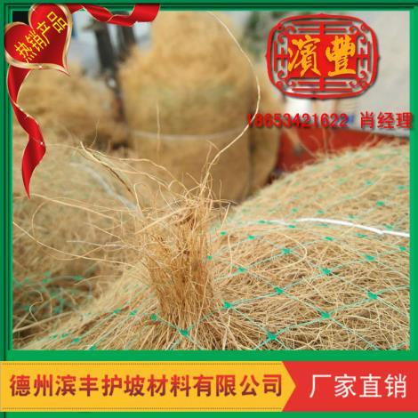 绿化植草毯新品 绿化景观植草毯直销