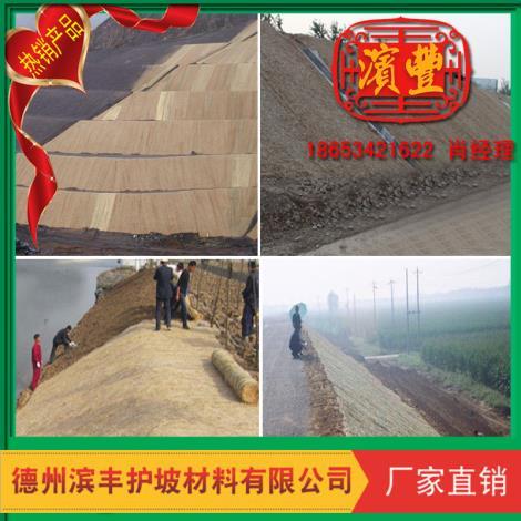 抗沖植草毯廠家直銷 濱豐景觀綠化草毯