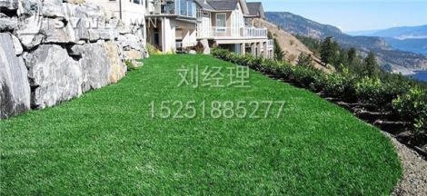人造草坪景观