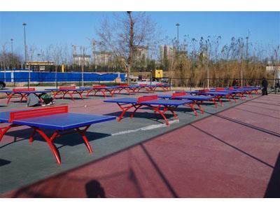 耐腐蚀室外乒乓球台