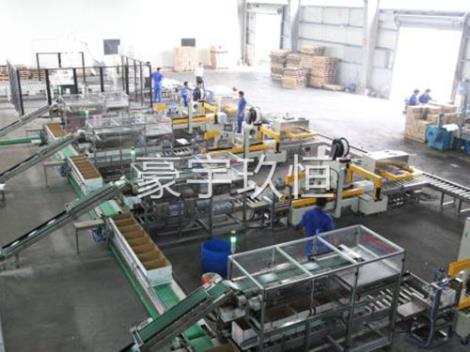 全自动包装生产线定制
