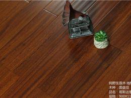 地板圆盘豆