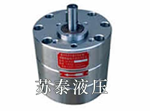 非标齿轮油泵