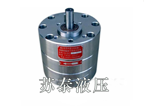 不锈钢齿轮泵定制