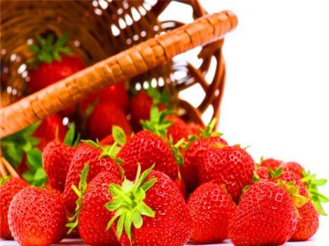 句容草莓采摘