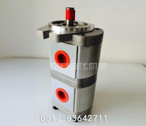 双联齿轮泵定制