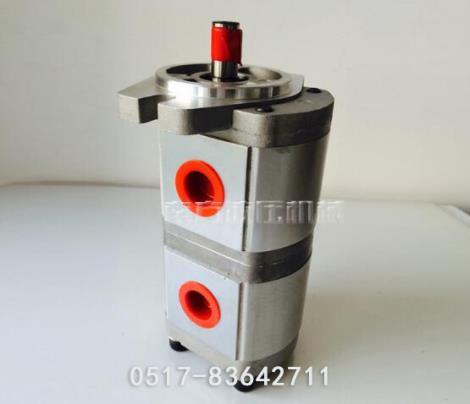 双联液压柴油泵直销
