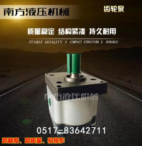 电动微型齿轮泵定制