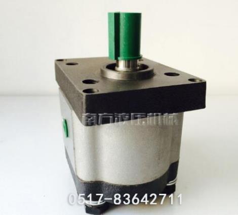 电动微型齿轮泵加工厂家