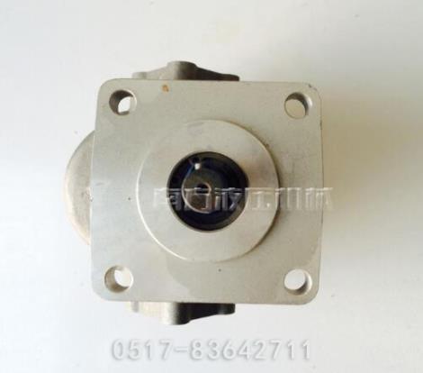 电动液压齿轮泵供货商