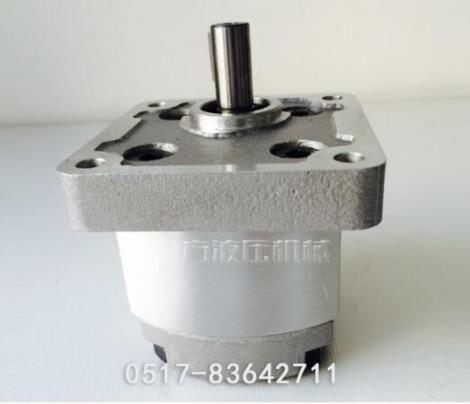 耐腐蚀高压齿轮泵加工