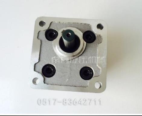 耐腐蚀高压齿轮泵供货商