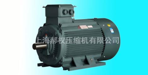 IP55高性能电机加工