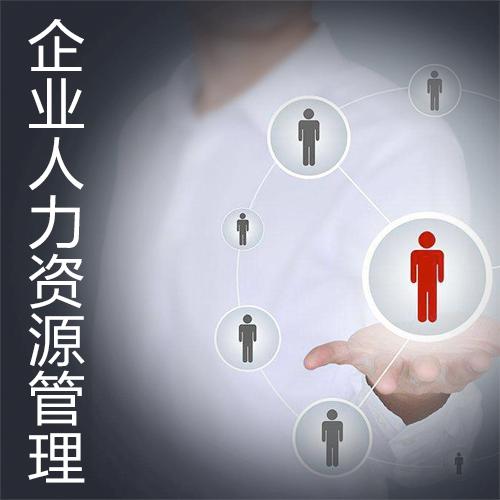 企业人力资源管理