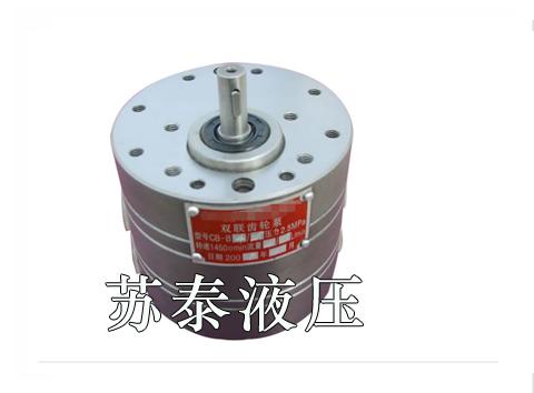 双联齿轮泵(叶片泵)