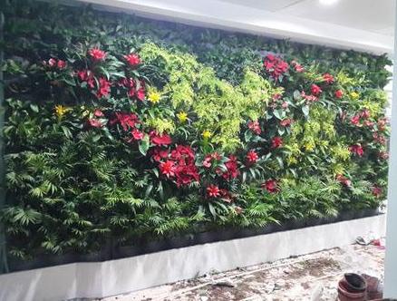 立體植物墻設計