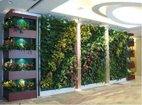 室內植物墻定制
