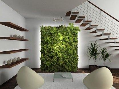 室內植物墻安裝