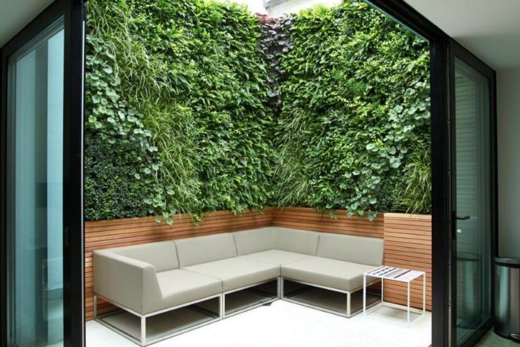垂直植物墻圖片