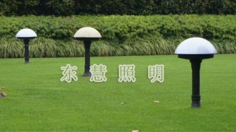 常州草坪灯定制