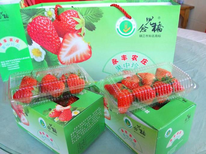 草莓采摘庄园
